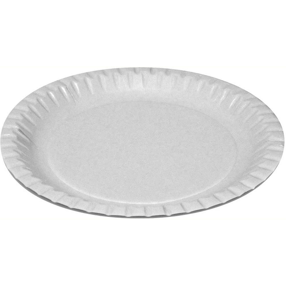 Disposable Paper Plate (pack of 500)